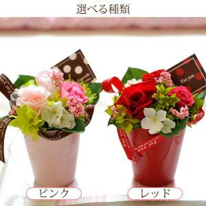 【送料無料】プリザカップピンクレッド