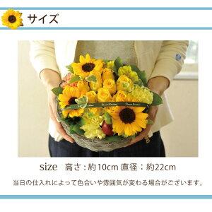 サイズ・10本のバラとひまわりアレンジメント【送料無料】