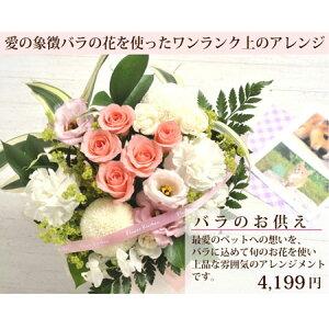 【送料無料】ペットのお供えバラアレンジ・4199円【明日楽対応】