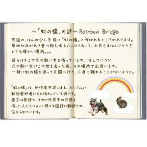 【ペットのお供え花】虹の橋の詩