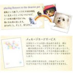 【ペットのお供え花】メッセージカードについて