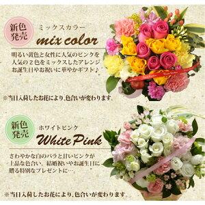 カラフルミックス・ホワイトピンク