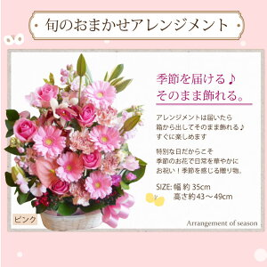 【送料無料】旬のアレンジメント