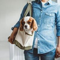 【犬キャリーバッグ】スクエアトートハンプツートンMサイズキャリーバッグ・キャリーバック/コンテナ小型犬用キャリーバッグ犬用品ペット用品