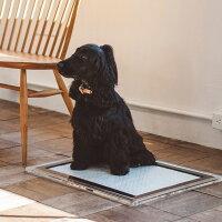アクリルトイレトレイMワイド犬トイレアクリル