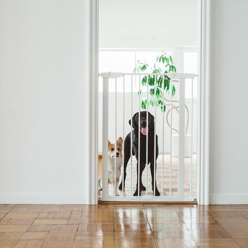 【犬フェンス】スタイリッシュドッグゲートトールおしゃれなアイアン製ドッグフェンスゲートフェンスおしゃれシンプルつっぱり北欧風アイアンゲートペットフェンスドッグフェンスゲートガード柵階段パーテーション
