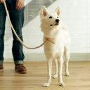 小型犬用ヌメウーブンリングリード L