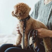 【犬リード】リフレクティブリードS