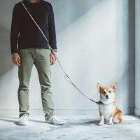【犬リード】リフレクティブマルチパーパスリードM