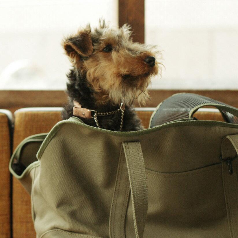 【犬 首輪】オリジナル ヌメ ウーブン ハーフチョーク M サイズ小型犬 犬用 本革 革 首輪