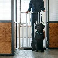 ゲート,シンプル,大型犬,北欧,デザイン,ドッグゲート