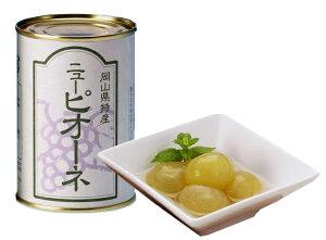 果物王国の缶詰「ニューピオーネ」