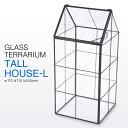 【SALE 30%OFF!】 Glass Terrarium ガラス テラリウム 【トールハウスLサイズ】 SPICE スパイス XSGH1040 グラス ボックス フラワー ベース ケース 花器 華道 ディスプレイ 展示 ガーデニング 雑貨 北欧 デザイン アレンジメント
