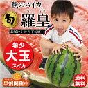 【送料無料】長崎県産すいか URIBO(うり坊)3〜4玉入り/箱