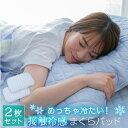 極冷え 冷感 枕パッド 【2枚セット】 43x63サイズ 送料無料 まくらパッド 抗菌防臭 防ダニ マクラパッド