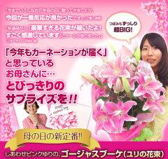 【楽天母の日特集に紹介されました!】母の日 ギフト 送料無料 BIG!PINKユリの花束 プレ…
