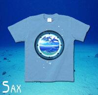 イルカ|ドルフィン|海|夏|アクアリウム|GENJU