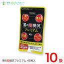 黒の超贅沢 プレミアム45粒 10袋熟成黒ニンニクパウダー含有加工食品バイタルファーム 中央薬品