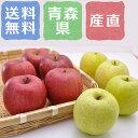 商品画像:ビーライフショップの人気おせち楽天、特許栽培 葉とらずりんご ミックス(サンふじ&サン王林) 青森県産 合計3kg(8?9玉)