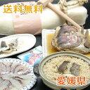 「愛媛・由良の鯛フルコース」