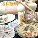 愛媛・由良の鯛フルコース