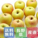 商品画像:産直グルメギフト専門店ギフチョクの人気おせち楽天、茅野さんのりんご ぐんま名月 長野県産 3.5kg