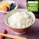 低糖質 糖質制限 米 食品 糖質オフ 50% 白めし4袋入 4食 白 ごはん ゴハン 糖質 カット 食物繊維 食事制限 置き換え ダイエット 糖質制限ダイエット ロカボ 米 こめ 冷凍食品 こんにゃく米ではありません