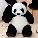 パンダ【どうぶつ】上海パンダ(M)