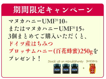 マヌカハニーUMF10+UMF協会認定お試しニュージーランド無農薬、無添加天然はちみつハニーバレーマヌカ