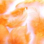 募金羽根 オレンジ 【羽根】【羽】