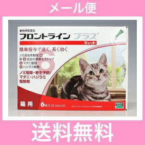 ◎◎【メール便・送料無料】猫...