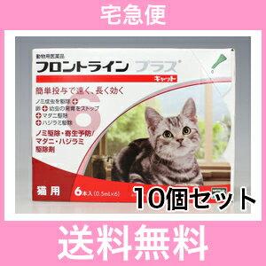 ◎【宅急便・送料無料】猫用 フロントラインプラス 6本入 [10個セット]:ハッピーMD