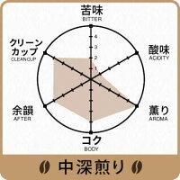 【シングルオリジンコーヒー】HIROCOFFEE◆スマトラ・マンデリン・ブルーアチェ100g