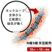 TAOネックレス磁気の配列