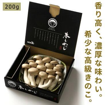 本しめじ 200g (きのこ 本シメジ ほんしめじ ホンシメジ)【送料別】