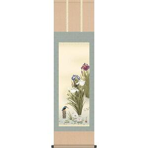 掛軸 掛け軸-菖蒲/長江桂舟(尺三)小さい床の間 和室 モダン お洒落 日本製 ギフト 表装 壁飾り 四季 花鳥画 かけじく[送料無料