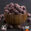 有機 JAS 認証 オーガニック 冷凍 ワイルドブルーベリー 野生種 1kg カナダ産 砂糖不使用