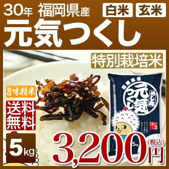 福岡県 元気つくし 特別栽培米 5kg 送料無料 29年産の(玄米)又は(白米) 内祝いやお返し ギフトに熨斗(のし)名入れ 可