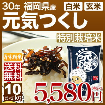 福岡県 元気つくし 特別栽培米 10kg(5kg×2)送料無料 29年産の(玄米)又は(白米) 内祝いやお返し、ギフトに熨斗(のし)名入れ 可