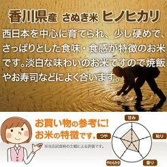 香川県ヒノヒカリ