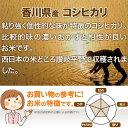コシヒカリ 2kg 送料無料 香川県 令和2年産 (米/白米 2キロ) 食べ比べサイズの お米 3