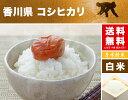 コシヒカリ 2kg 送料無料 香川県 令和2年産 (米/白米 2キロ) 食べ比べサイズの お米 2