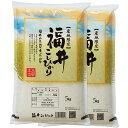 新米 コシヒカリ 10kg 送料無料 福井県 令和元年 産(