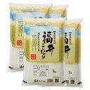 新米 コシヒカリ 20kg 送料無料 福井県 令和元年 産(