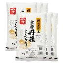 (玄米)新米 特別栽培米 丹後コシヒカリ 30kg 送料無料 京都府 令和元年産/令和1年産 (5kg×6)