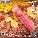 【楽天市場出店記念!いきなりバターソース1本付】CABサーロ...