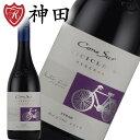 チリ ワイン 人気