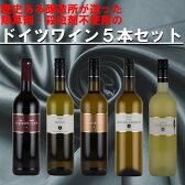 赤ワイン 白ワイン ワインセット ドイツワインセット 送料無料 甘口 辛口 ファルツ産 5本
