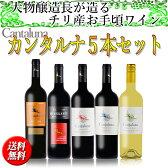 チリワインセット 大物醸造家フィリップ・ブラ氏が手掛けるチリ産高品質デイリーワイン「カンタルナ」5本セット 送料無料