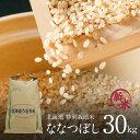 米 玄米 10kg あきたこまち 5kg×2袋 令和2年産 山形県産 精米無料 白米 無洗米 分づき 当日精米 送料無料